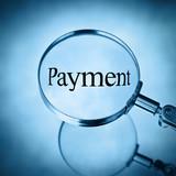 Legge n. 102/2009 - Tempestività dei pagamenti